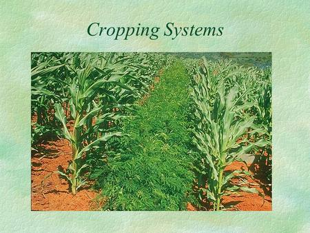 Cropping Systems. Pattern of crops taken up for a given piece of land, or sequence in which the crops are cultivated on piece of land over a fixed period.