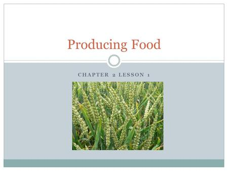 Producing Food Chapter 2 Lesson 1.