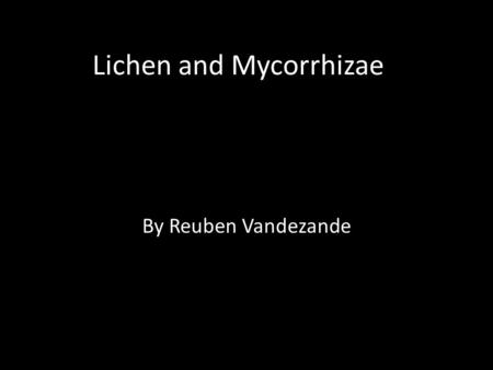 Lichen and Mycorrhizae By Reuben Vandezande. Lichens A fungus that grows symbiotically with algae, resulting in a composite organism that characteristically.