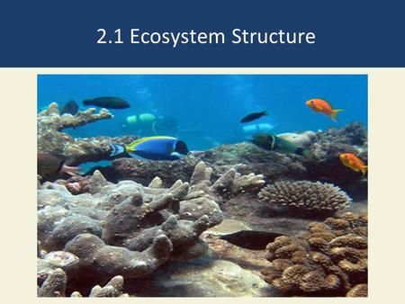 2.1 Ecosystem Structure. Ecosystems Have Living and Nonliving Components Abiotic – Non-living Water Air Nutrients Rocks Heat Solar energy Biotic- Living.