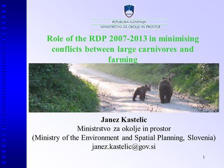 1 Role of the RDP 2007-2013 in minimising conflicts between large carnivores and farming Janez Kastelic Ministrstvo za okolje in prostor (Ministry of the.