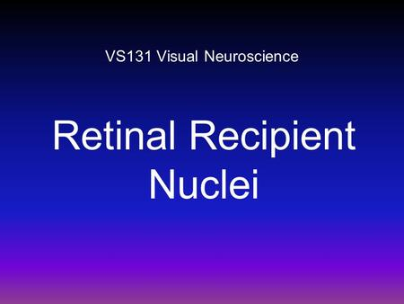 VS131 Visual Neuroscience