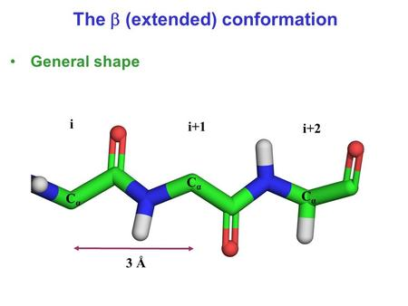 3 Å i i+1 i+2 CαCα CαCα CαCα The  (extended) conformation General shape.