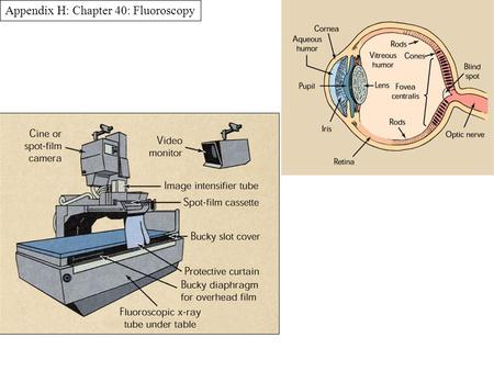 Appendix H: Chapter 40: Fluoroscopy