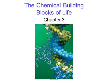 The Chemical Building Blocks of Life Chapter 3. 2 Biological Molecules Biological molecules consist primarily of -carbon bonded to carbon, or -carbon.