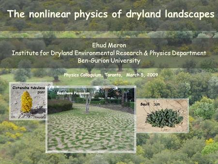 The nonlinear physics of dryland landscapes Ehud Meron Institute for Dryland Environmental Research & Physics Department Ben-Gurion University Squill חצב.