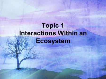Topic 1 Interactions Within an Ecosystem. I. Interactions Within an Ecosystem Ecology is the study of the relationship between living organisms and their.
