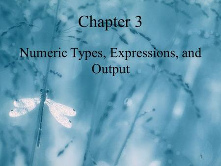 1 Chapter 3 Numeric Types, Expressions, and Output.