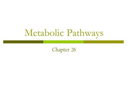 Metabolic Pathways Chapter 26. Metabolic Pathways – Ch. 26 1. List three reasons why the hydrolysis of ATP into ADP and phosphate is so thermodynamically.