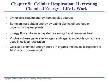 Copyright © 2005 Pearson Education, Inc. publishing as Benjamin Cummings Chapter 9: Cellular Respiration: Harvesting Chemical Energy - Life Is Work Living.