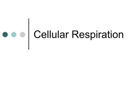 Cellular Respiration. Process by which cells release energy from molecules of food. Carbohydrates, fats and proteins all contain energy This energy is.