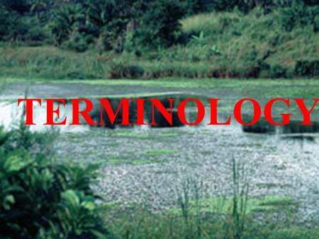 TERMINOLOGY. 1. Ecology The study of how organisms interact with their environment and each other.