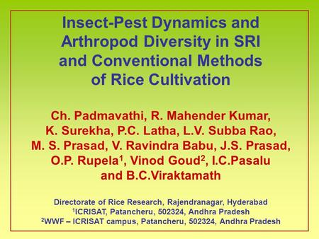 Insect-Pest Dynamics and Arthropod Diversity in SRI and Conventional Methods of Rice Cultivation Ch. Padmavathi, R. Mahender Kumar, K. Surekha, P.C. Latha,