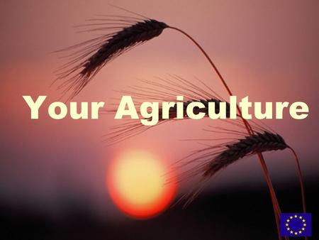 Your Agriculture. What is the challenge? What can policy do? What can you do?