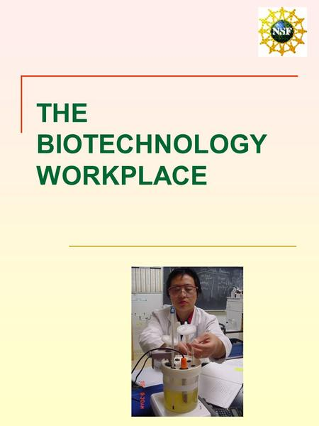 THE BIOTECHNOLOGY WORKPLACE. OVERVIEW Biotechnology workplaces Laboratories.