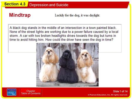 Section 4.3 Depression and Suicide Mindtrap Slide 1 of 14.