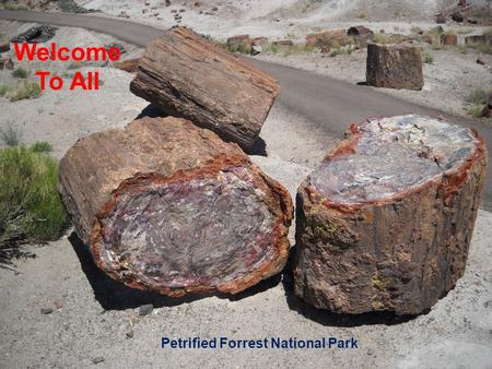 Petrified Forrest National Park Welcome To All. Let Us Worship In Song Song Leader – John Scott / Chris Craig  First Hymn # 267  Second Song # 406 Opening.