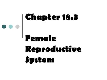 Chapter 18.3 Female Reproductive System. Structure of the Female Reproductive System At birth, a female's ovaries contain around 400,000 immature ova,