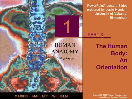 PowerPoint ® Lecture Slides prepared by Leslie Hendon, University of Alabama, Birmingham HUMAN ANATOMY fifth edition MARIEB | MALLATT | WILHELM 1 Copyright.