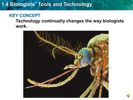 1.4 Biologists' Tools and Technology KEY CONCEPT Technology continually changes the way biologists work.