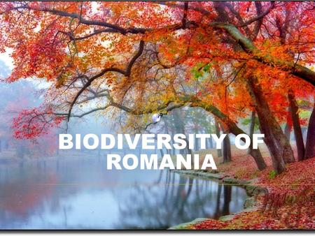 BIODIVERSITY OF ROMANIA.  Biodiversity refers to the variety of genes, species and ecosystems that constitute life on earth.  Our country is famous.