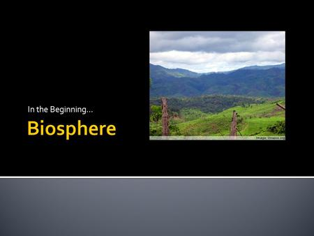 In the Beginning....  The biosphere is all about life.  Physical geographers use the term biosphere to describe our living world.  This is where all.