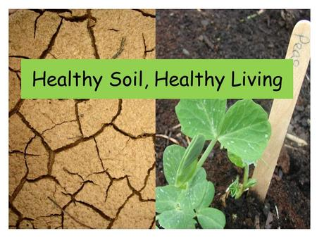 Healthy Soil, Healthy Living