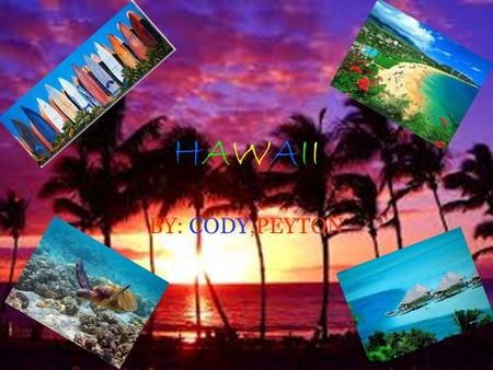 HAWAIIHAWAII BY: CODY,PEYTON. MAP The flight took 13 hrs. 24 min. We will drive to the Austin airport.