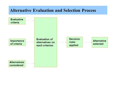Alternative Evaluation and Selection Process