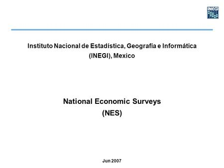 Instituto Nacional de Estadística, Geografía e Informática (INEGI), Mexico National Economic Surveys (NES) Jun 2007.