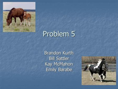 Problem 5 Brandon Kurth Bill Sattler Kay McMahon Emily Barabe.
