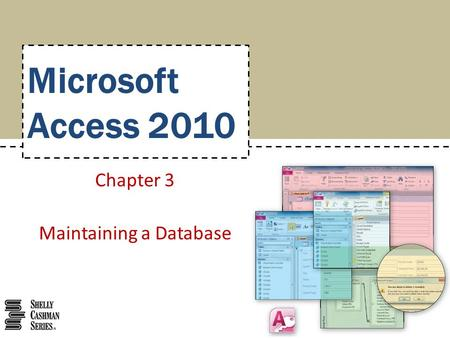 Microsoft Access 2010 Chapter 3 Maintaining a Database.