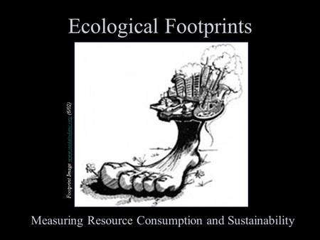 Footprint Image www.sustaindane.org (6/02)www.sustaindane.org Ecological Footprints Measuring Resource Consumption and Sustainability.