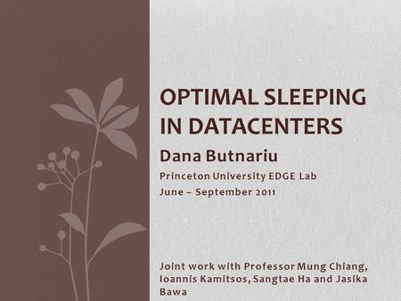 Dana Butnariu Princeton University EDGE Lab June – September 2011 OPTIMAL SLEEPING IN DATACENTERS Joint work with Professor Mung Chiang, Ioannis Kamitsos,
