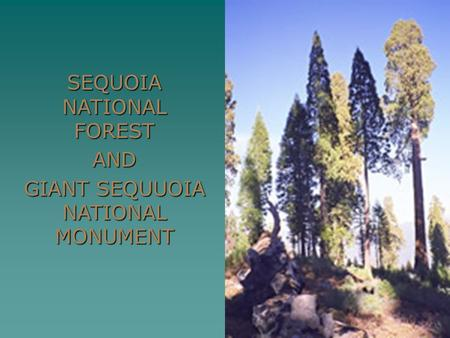 SEQUOIA NATIONAL FOREST AND GIANT SEQUUOIA NATIONAL MONUMENT.