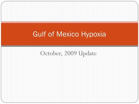 October, 2009 Update Gulf of Mexico Hypoxia. Activities Since Nashville Commission Meeting Development of Annual Report Ohio River Sub Basin Steering.