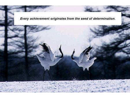 1 Every achievement originates from the seed of determination.