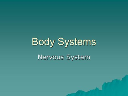 Body Systems Nervous System. Nervous System Functions  Sensory input – sense organs, receptors, –afferent neurons  Integration – Central Nervous System(CNS)