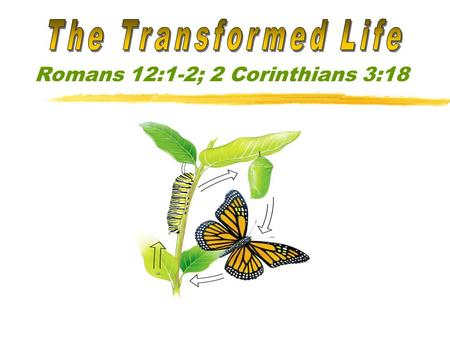Romans 12:1-2; 2 Corinthians 3:18. If we are being transformed, we will pursue heavenly things. (Colossians 3:1-3) The life that is not being transformed.