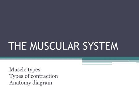 THE MUSCULAR SYSTEM Muscle types Types of contraction Anatomy diagram.