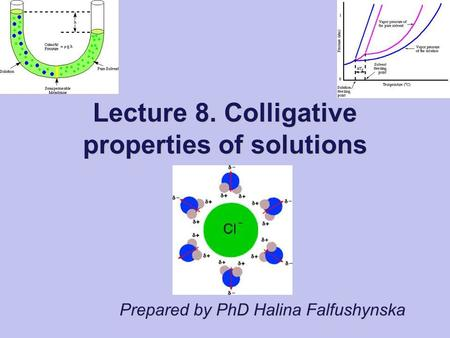 Prepared by PhD Halina Falfushynska Lecture 8. Colligative properties of solutions.