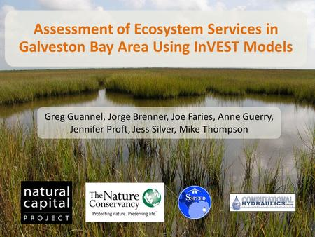 Assessment of Ecosystem Services in Galveston Bay Area Using InVEST Models Greg Guannel, Jorge Brenner, Joe Faries, Anne Guerry, Jennifer Proft, Jess Silver,