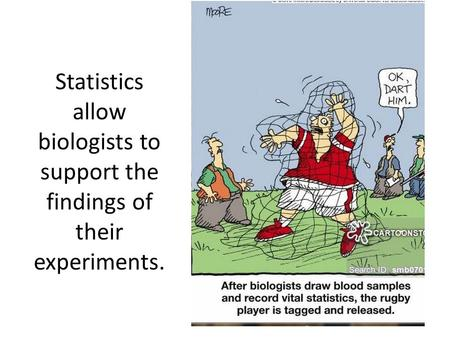 Statistics allow biologists to support the findings of their experiments.