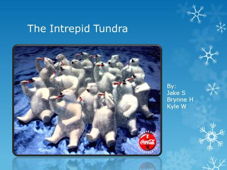 The Intrepid Tundra By: Jake S Brynne H Kyle W. Map of Artic Tundra.