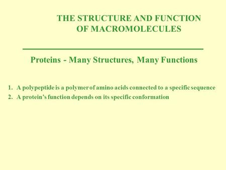 THE STRUCTURE AND FUNCTION OF MACROMOLECULES Proteins - Many Structures, Many Functions 1.A polypeptide is a polymer of amino acids connected to a specific.