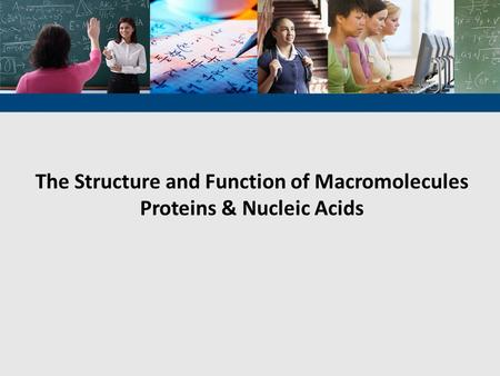 The Structure and Function of Macromolecules Proteins & Nucleic Acids.