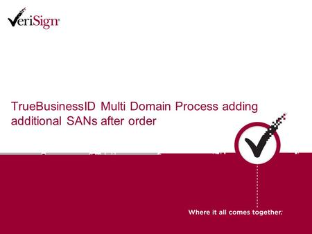 TrueBusinessID Multi Domain Process adding additional SANs after order.