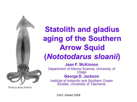 CIAC, Hobart, 2006 Statolith and gladius aging of the Southern Arrow Squid (Nototodarus sloanii) Jean F. McKinnon Department of Marine Science, University.