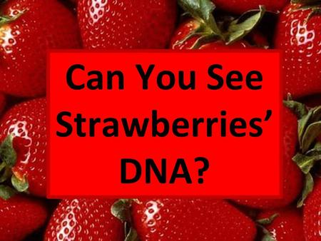 Can You See Strawberries' DNA?.