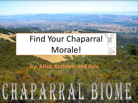 Find Your Chaparral Morale! By: Alisa, Kathryn, and Kyle.
